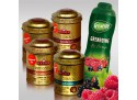 "Set 4 Luxury Leaf Tea + 1 Teisseire Sirup ""Grenadine"""
